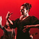 Intensive Flamenco Technique for Beginners