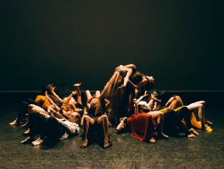 Contemporary Dance Company