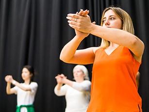 Flamenco Dance - Beginners